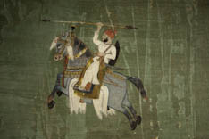 Inde - cheval Marwari - 48