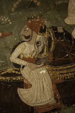 Inde - cheval Marwari - 50